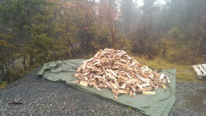 The firewood got delivered
